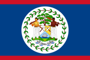 belize flag rgb colors